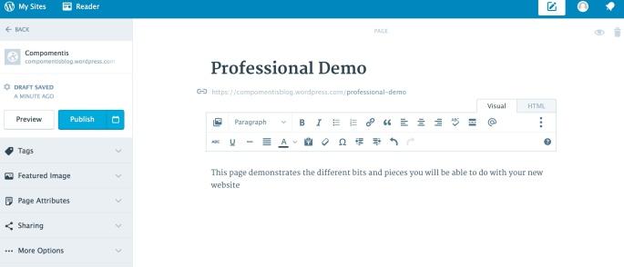 wordpress-01-editor